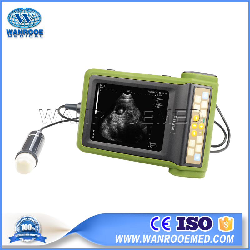 Veterinary Ultrasound Scanner, Mechanical Veterinary Ultrasound, Vet Ultrasound Machine Price, Dog Ultrasound Machine, Pig Ultrasound Machine
